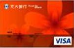 元大信用卡VISA普卡