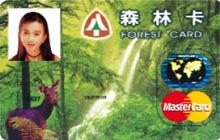 森林卡MasterCard普卡