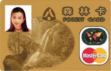 森林卡MasterCard金卡